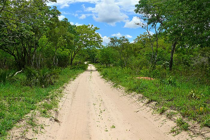 Adventurous Self drive - The road through the Mozambique Peace Park.
