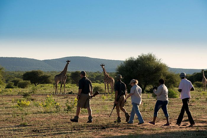 South Africa walking safaris